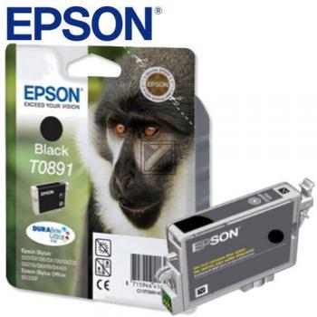 Epson Tintenpatrone schwarz (C13T08914011, T0891)