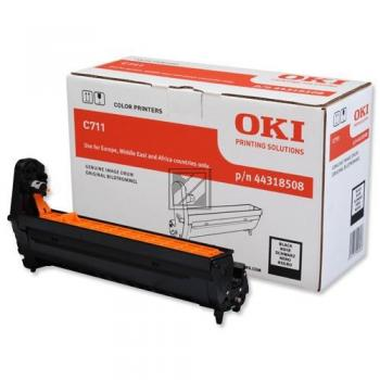 OKI Fotoleitertrommel schwarz (44318508)