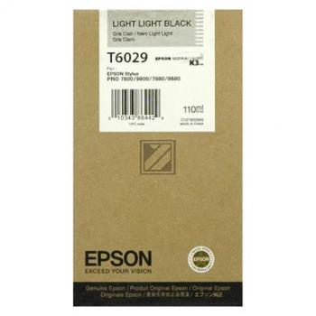 Epson Tintenpatrone Ultra Chrome K3 schwarz light, light (C13T602900, T6029)
