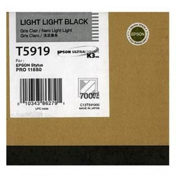 Epson Tintenpatrone Ultra Chrome schwarz light, light (C13T591900, T5919)