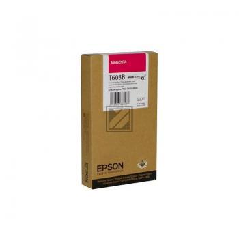 Epson Tintenpatrone Ultra Chrome cyan (C13T613200, T6132)