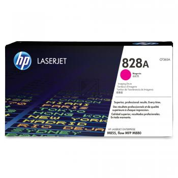 HP Fotoleitertrommel magenta (CF365A, 828A)