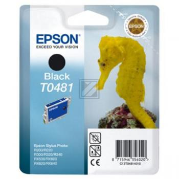 Epson Tintenpatrone schwarz (C13T04814010, T0481)