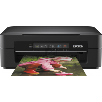 Epson Expression Home XP-245 (black)