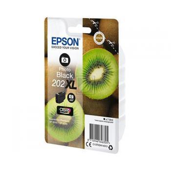Epson Tintenpatrone schwarz photo HC (C13T02H14010, 202XL)