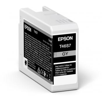 Epson Tintenpatrone grau (C13T46S700, T46S7)