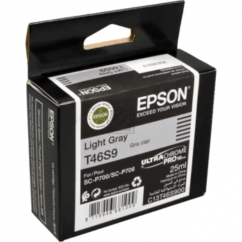 Epson Tintenpatrone hellgrau (C13T46S900, T46S9)