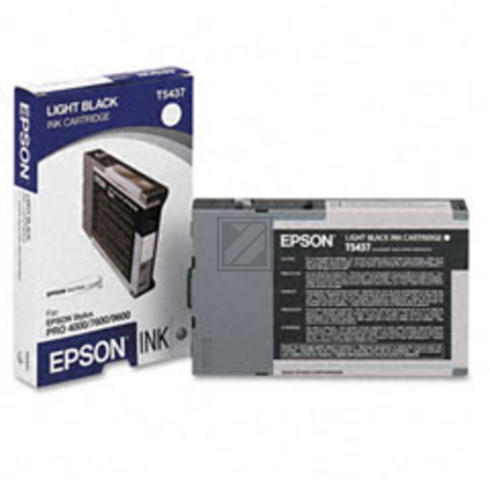 EPSON STYLUS PRO 7600 TINTE GRAU 110ml, Kapazität: 110ml