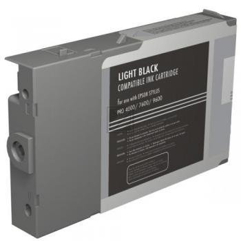 Epson Tintenpatrone schwarz light (C13T543700, T5437)